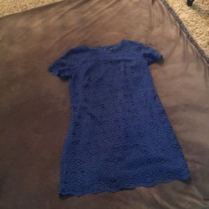 Ann Taylor Royal Blue Lace Dress